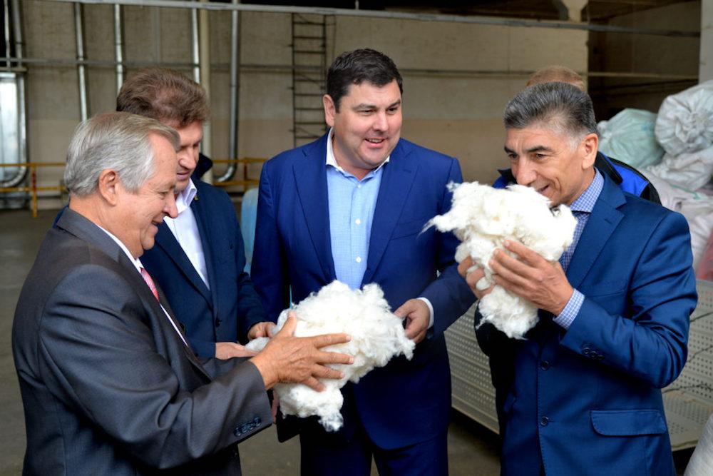 Хлопок может стать традиционной культурой в Волгоградской области