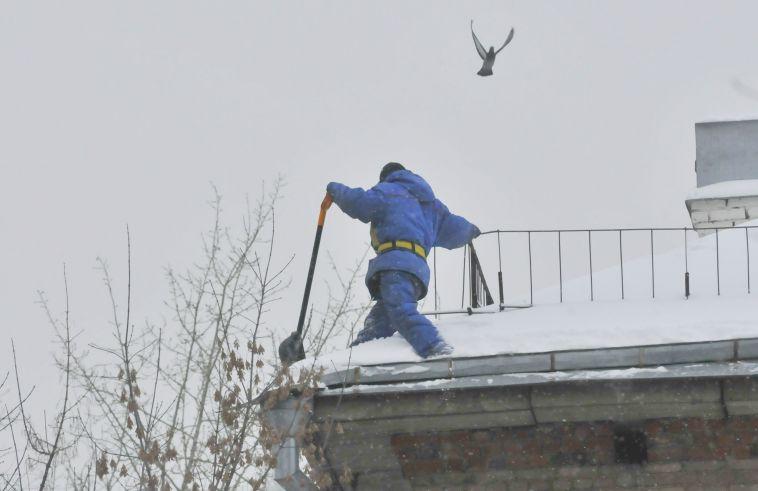 Я инспектор январь на краю